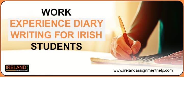 Work Experience Diary Writing